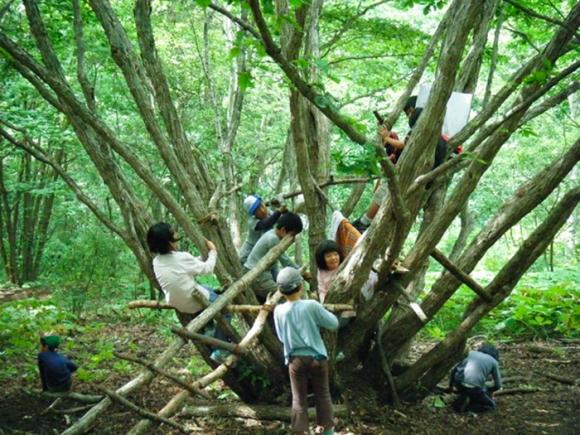 школа природы