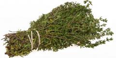 Тимьян: растение, снимающее боли и придающее храбрость