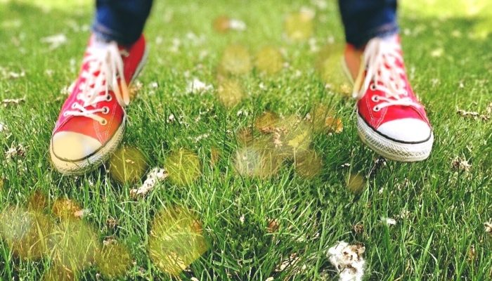 Converse — кеды с историей