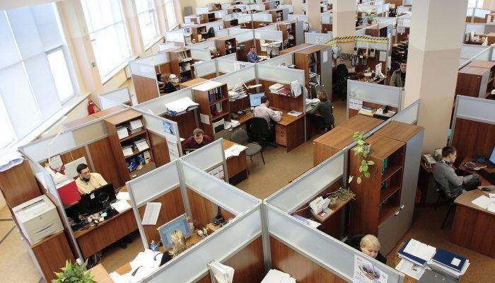 Офисные перегородки из инновационных материалов. Гипсовинил и его преимущества