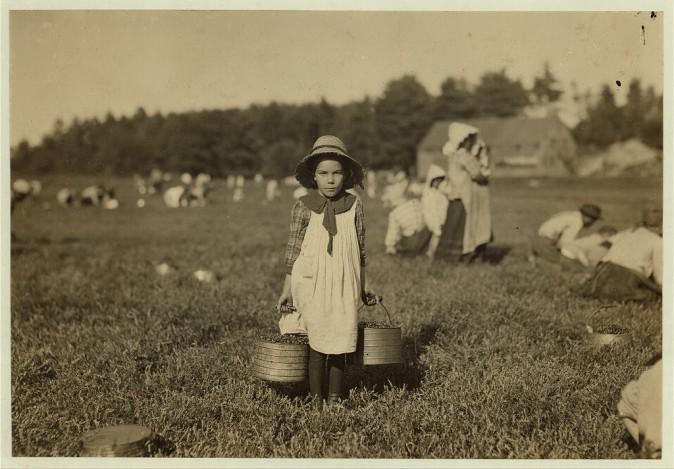 Маленькая Мерилда собирает клюкву в Рочестере, штат Массачусетс, сентябрь 1911 г. Фото: L.W. Hine/LOC