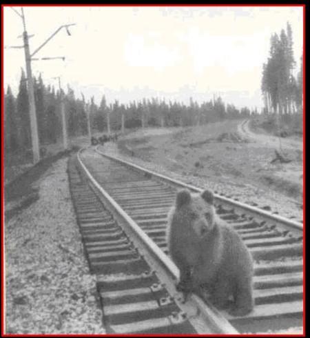 1965 год. Фото предоставлены А. Домнич —волонтёра музея-филиала