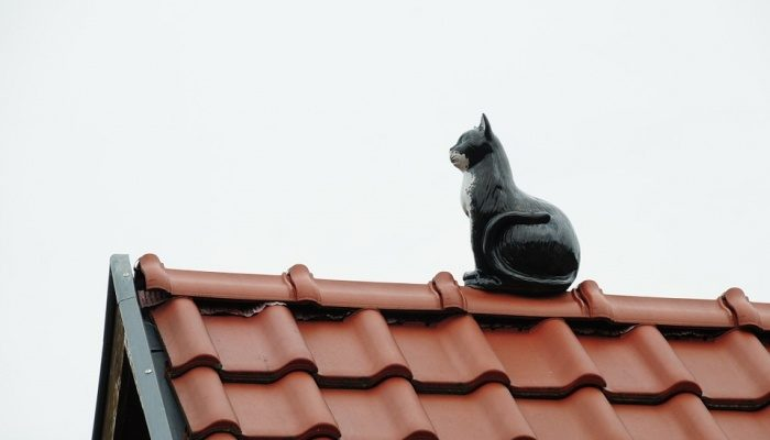 Чем покрыть крышу дачного дома? Виды кровельного материала