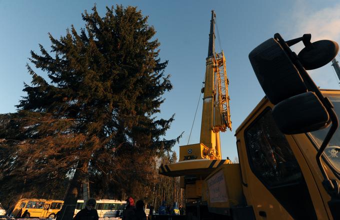 Из-за расширения Новой Москвы под угрозой находятся тысячи гектаров леса. Фото: ANDREY SMIRNOV/AFP/Getty Images