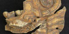 Челюсти как ювелирные украшения: новые археологические находки в Мексике