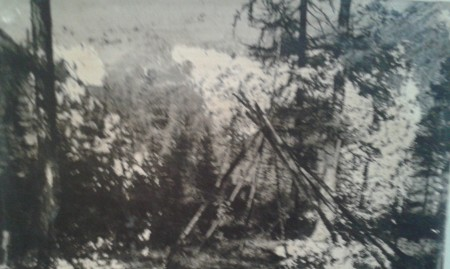 Тайга. Место первой ночевки экспедиции после выезда из поселка Верх-Гутары
