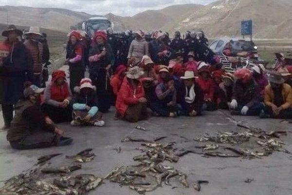 Тибетцы протестуют против промышленного загрязнения