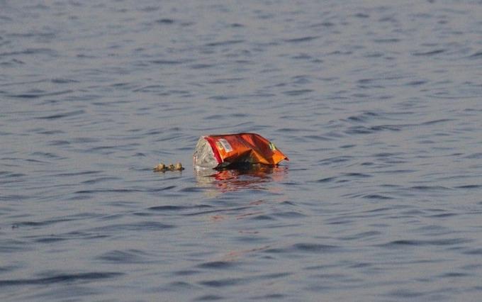 Пластиковые отходы в Тихом океане беспокоят экологов