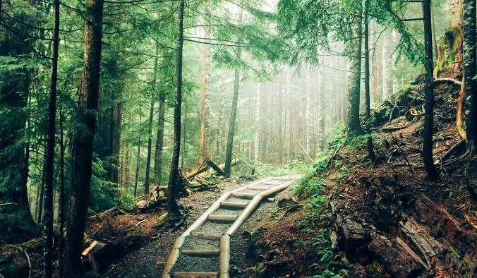природа, прогулка