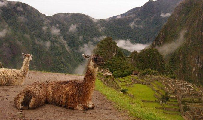 Мачу-Пикчу: между культурой и природой