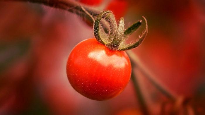 5 преимуществ от потребления сырых овощей и фруктов