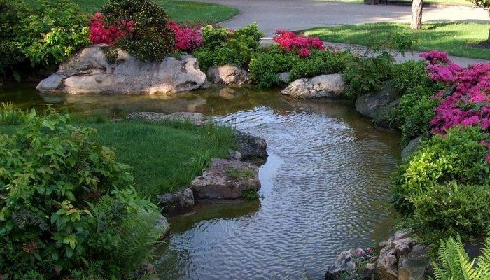 Благоустраиваем приусадебный участок прудом