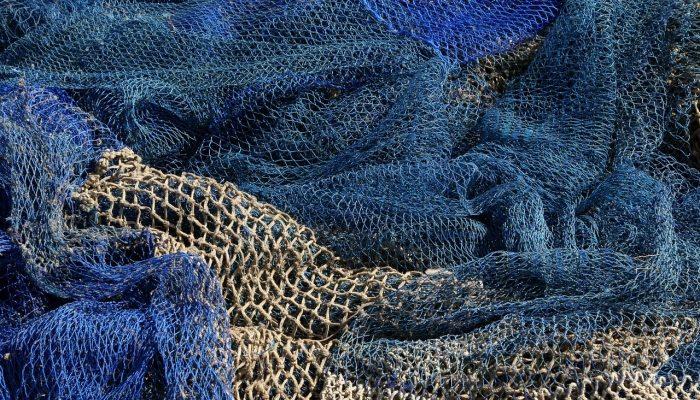 Рыболовные дели: сферы использования, виды и их особенности