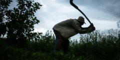 Скрытые жертвы современной работорговли: 46 миллионов