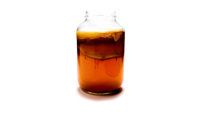 чайный гриб, антибиотик