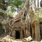 В джунглях Камбоджи прячется очень много затерянных городов. Фото: pixabay.com/CC0 Public Domain