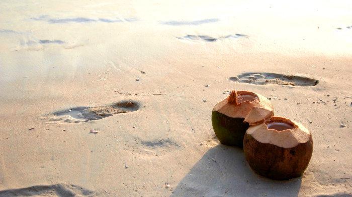 8 причин добавить кокос в диету