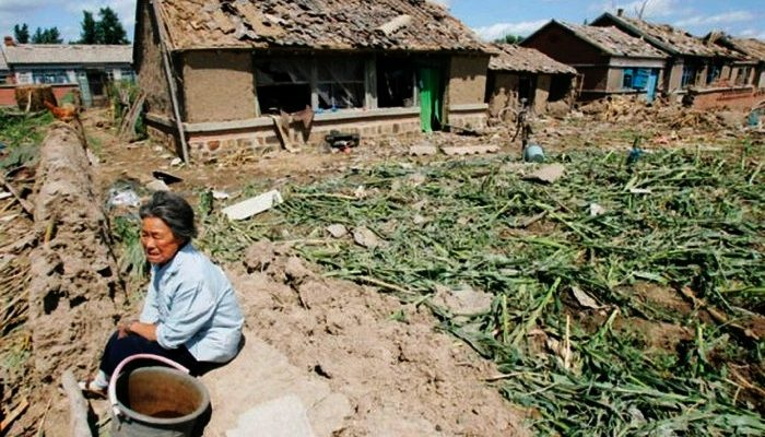 Китайцы больше не хотят заниматься земледелием