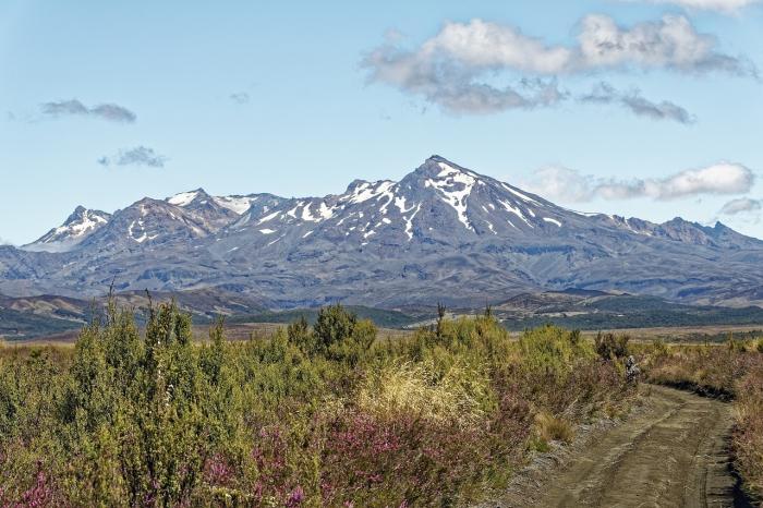 Большое скопление магмы обнаружено в подземной камере зомби-вулкана в Новой Зеландии