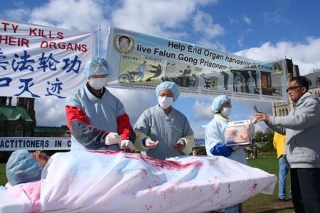 Инсценировка насильственного извлечения органов у сторонников Фалуньгун в Китае. Ванкувер, Канада. Фото: The Epoch Times