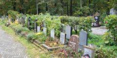Минздрав больше не ведёт статистику смертности на селе