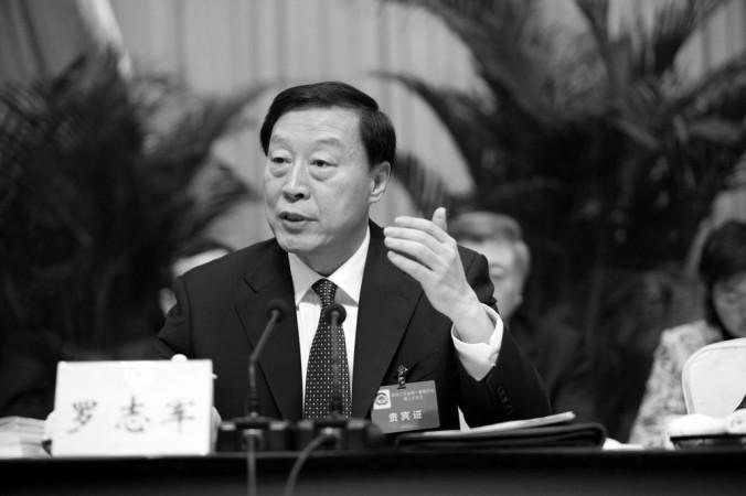 Ло Чжицзюнь выступает на политическом собрании 27 января 2010 г. Фото: jszx.gov.cn