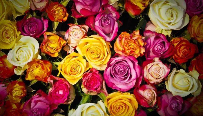 Доставка цветов в Сургуте