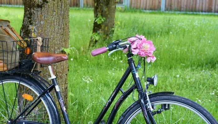Интересные факты из истории велосипеда