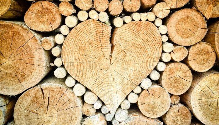 Разные дрова по-разному греют