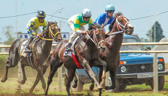 Ежегодные конные состязания чистокровных скакунов состоялись на Краснодарском ипподроме