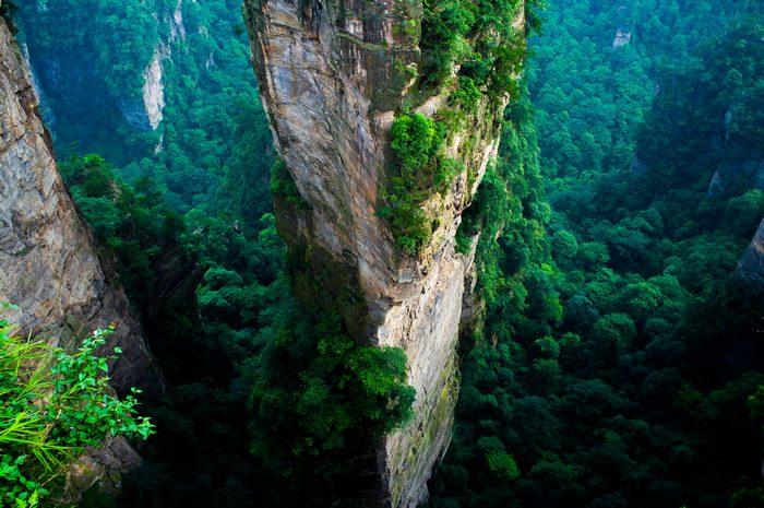 Национальный парк Чжанцзяцзе в Китае. Фото: severin.stalder/en.wikipedia.org/CC BY-SA 3.0