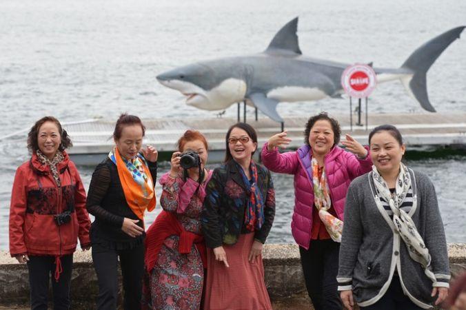Китайские туристы в Австралии. Фото:  GREG WOOD/AFP/Getty Images