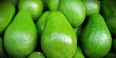 Авокадо — один из чемпионов по антиоксидантной защите