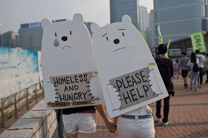 Митинг в защиту белых полярных медведей, призывающий к действиям по изменению климата, Гонконг, 29 ноября, 2015 год.Фото: DALE DE LA REY/AFP/Getty Images