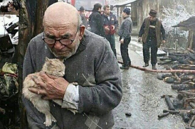 момент, кошка, старик, пожар