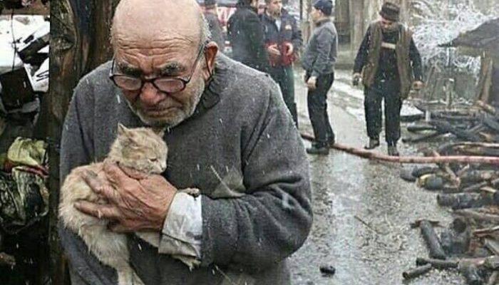 Старик бережно держал любимую кошку и наблюдал, как догорает его дом…