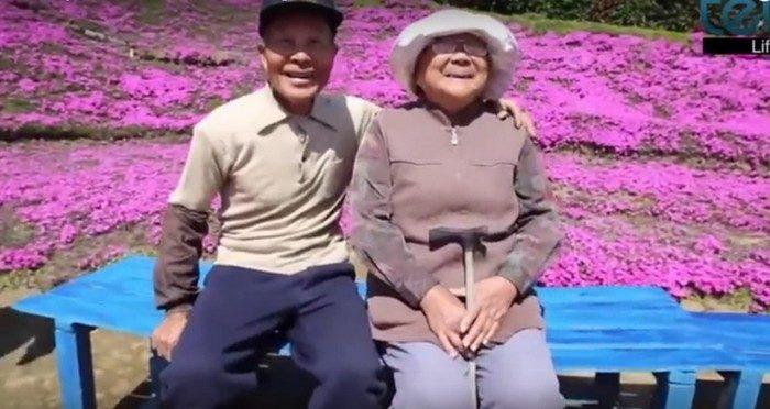 Муж 2 года сажал цветы, чтобы ослепшая жена наслаждалась их ароматом