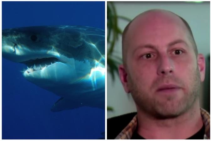опухоль, жизнь, акула