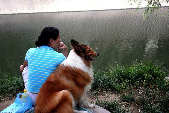 Любимая собака учительницы умерла. Сочувствующее письмо ученика растрогало женщину до слёз