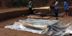 Археологи раскопали могилу матери с ребёнком возрастом 6 000 лет