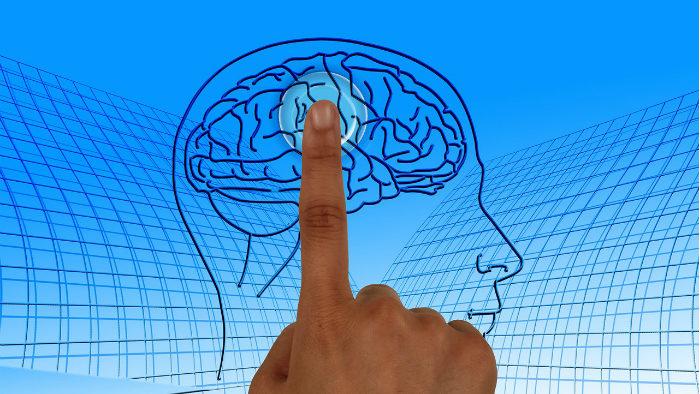Учёные нашли способ воскрешения мозга