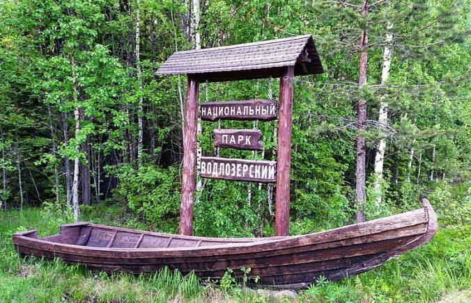 деревянная арка в лесу