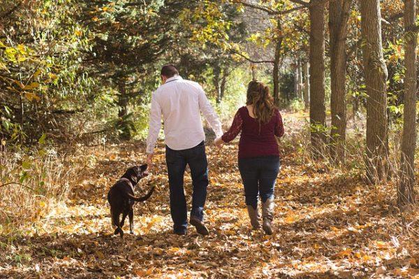 Семья с собакой