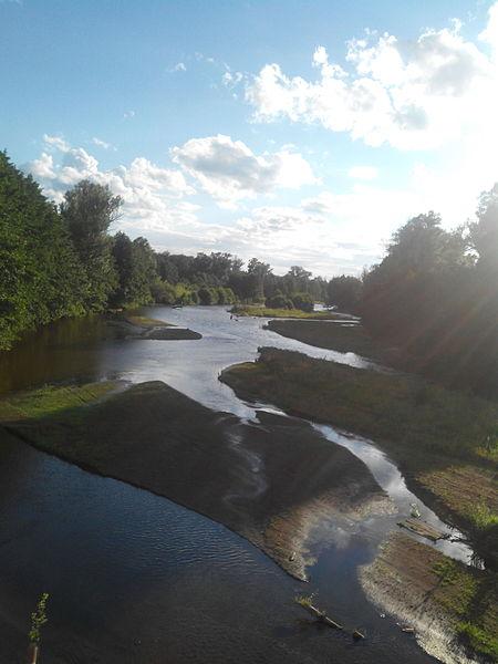 извилистая река по берегам которой находится лес