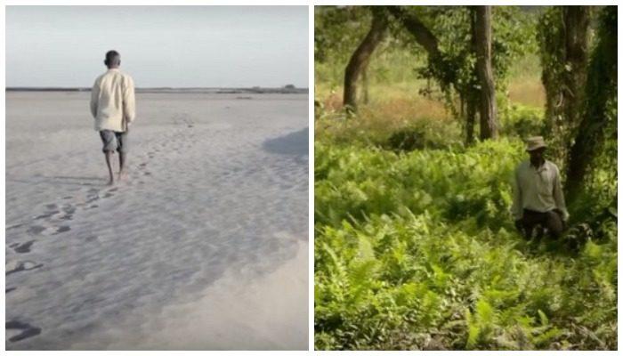 Чтобы спасти остров, он начал сажать бамбук 39 лет назад. Сейчас в его лесу гуляют стада слонов и носорогов