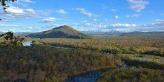 Национальный парк Бикин поможет сохранить природу Приморья