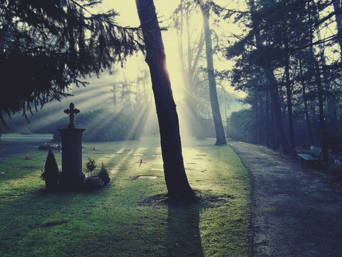 Каждый год в течение 70 лет она навещала могилу брата. Но кто-то ещё приходил сюда. Наконец сестра и незнакомец встретились