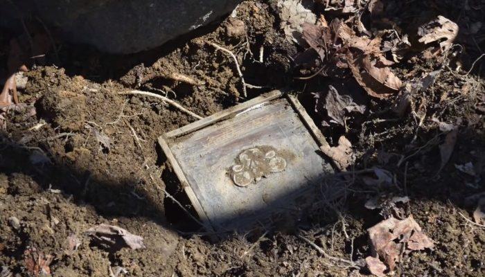 Парень отправился с подругой на поиски сокровищ. Они нашли ржавую старую коробку с… обручальным кольцом!