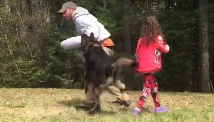 (Видео) Мужчина приблизился к маленькой девочке и получил отпор от её собаки