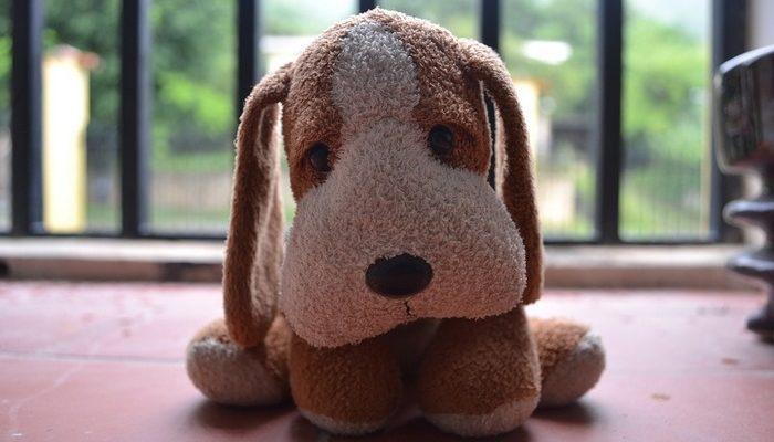 Девочка потеряла в аэропорту плюшевую собачку. Полицейские нашли игрушку и вернули с самодельной книжкой о приключениях пёсика